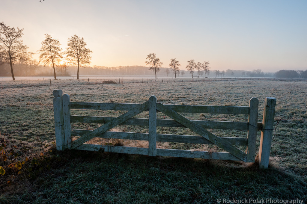 Frosty Fields-12-2